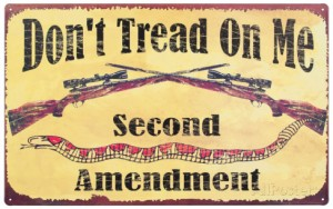 Second Amendment and Guns